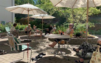 Sommarkarantän i Dunderbackens trädgård
